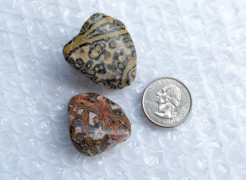 Leopardskin jasper XL tumbled stones