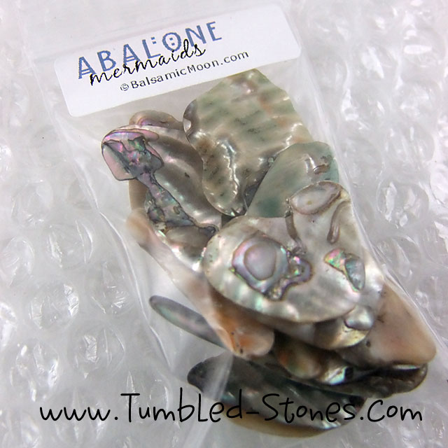 abalone shell tumbled pieces