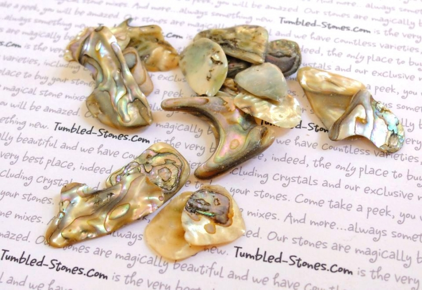 abalone pieces tumbled stones