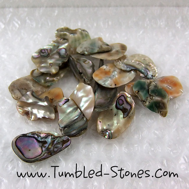 abalone tumbled pieces
